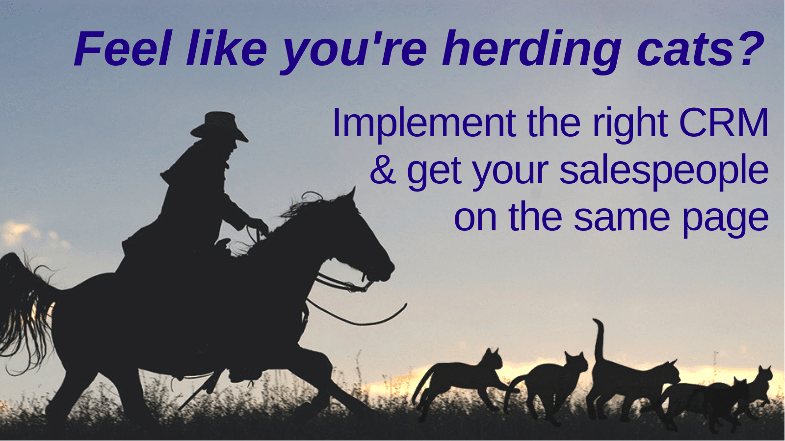 Feel like you're herding cats? Implement the right CRM and get your sales team on the same page